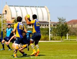 Ave Mary Papist Rugby 5