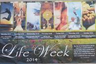 Life Week Ave Maria University